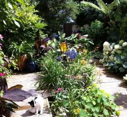 our-garden2-Copy