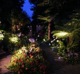 our-garden3-Copy