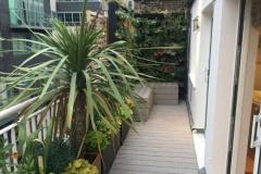 city-garden-4