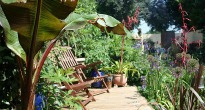 picture of lush tropical garden
