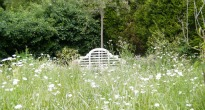 picture of seating in meadow grass