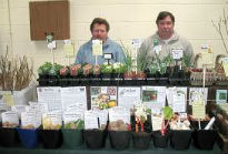 picture of Pennard Plants at Chelsea