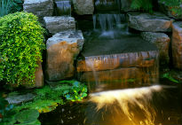 picture of pond with lighting
