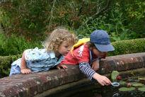 picture of children at Rosemoor