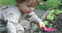 image of toddler gardening