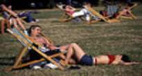 image of sunbathers in a park