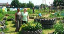 image of gardener volunteers