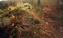 image of Sevenoaks after the Great Storm of 1987