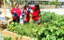 picture of children planting in the outdoor classroom