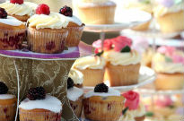 image of cup cakes at Malvern bake-off