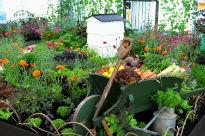 image of Edible Show Garden