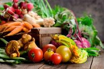 image of harvest vegetables