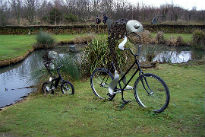 image of fish on bikes at London Wetlands Centre