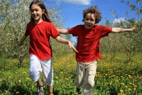 picture of children playing in a meadow