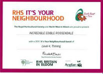 picture of It's Your Neighbourhood certificate