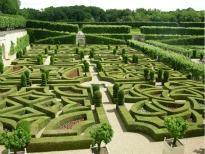 picture of garden in Villandry