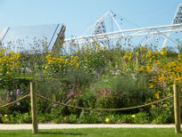 image of Olympic Park art installation
