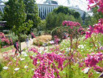 image of Great Britiah Garden