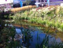 image of Wetlands Walk