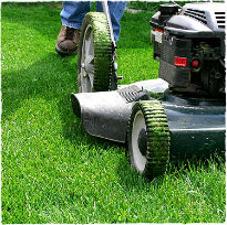 picture of lawn care