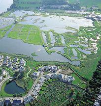 image of London Wetlands Centre