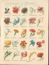 image of flowers poster