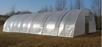 image of quonset tunnel greenhouse