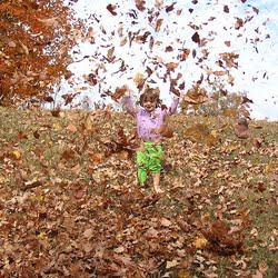 image of child throwing leaves