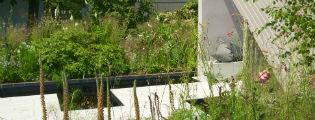 image of macmillan legacy garden at hampton court