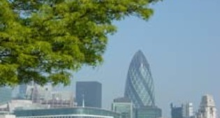 image of trees in London