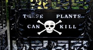 image of poison garden