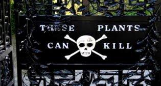 image of poison garden