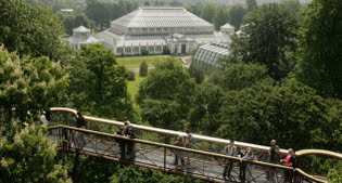 image of Kew Gardens from Xstrata Treetop Walkway