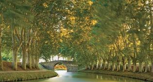 image of Canal du Midi