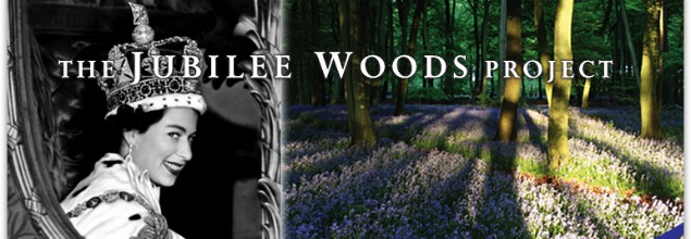 image of Jubilee Woods project banner