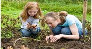image of children digging in a garden