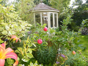 Doctor's Orders - a-view-of-the-summerhouse