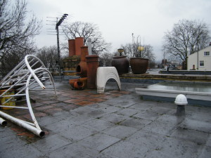 Rooftop Jungle - before-we-started