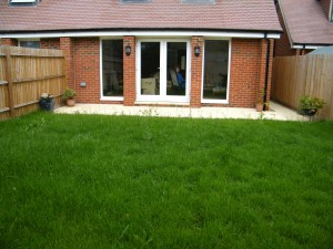 Small Courtyard for Lady of Leisure - bromley-garden-before