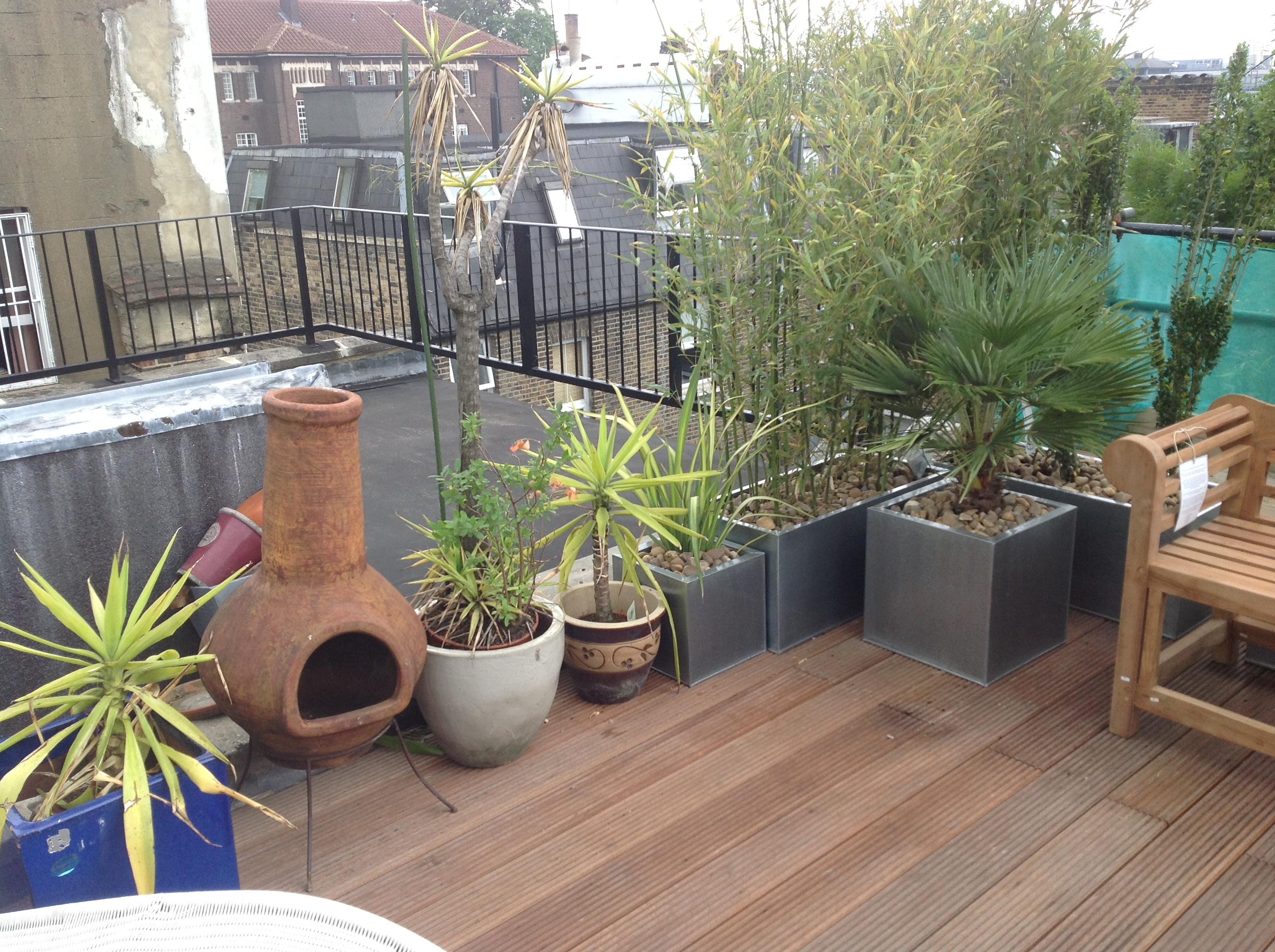 Rooftop Jungle Floral Hardy London Uk