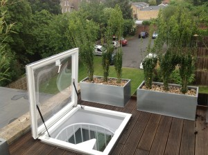 Rooftop Jungle - denmark-hill-rooftop