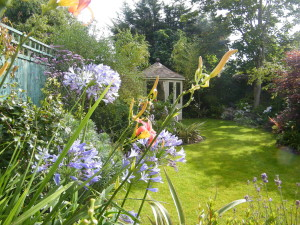Doctor's Orders - flowers-and-summer-house