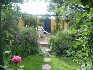 Lush Tropical - garden