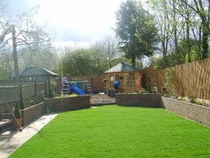Family Garden - grass-looking-green