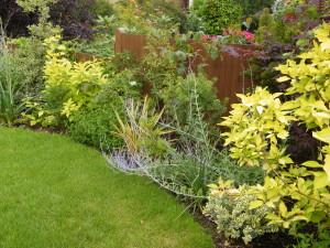 Modern & Traditional Meet - greenwich-shrubs