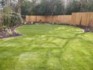 Love a Triangle - lawn-circles