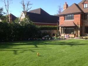 Pavilion and Pool House Garden - lawn-is-in-otford