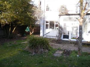 Double Dutch - old-esher-garden
