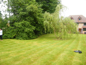 Pavilion and Pool House Garden - old-garden-space-in-otford