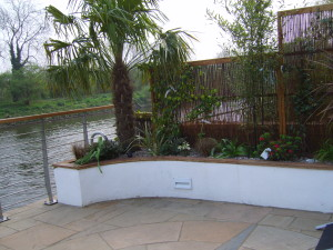 Contemporary Waterside - palm-planting